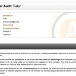 eerste pagina van een audit rapport